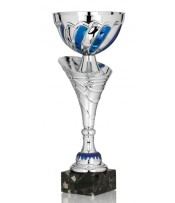Copa Participación