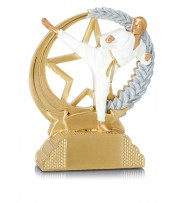 Trofeo Resina Artes Marciales Taekwondo