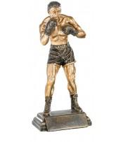 Resina Boxeo