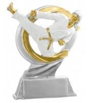 Resina Artes marciales Taekwondo
