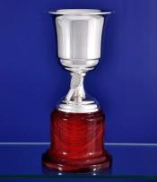 Copa Artesanal de Pádel con baño de plata